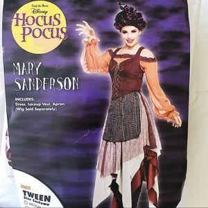 Mary Sanderson Halloween Costume
